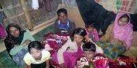 Bangladesh sends more Rohingyas Muslims back to Myanmar