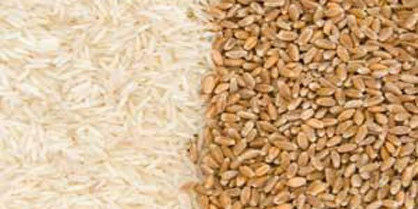Govt. to import 2 million tonnes of rice, wheat