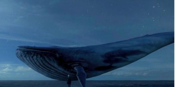 Bangladesh to block disastrous Blue Whale online challenges