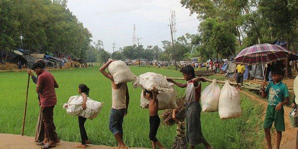 Bangladesh civic group to investigate atrocities on Rohingya Muslims