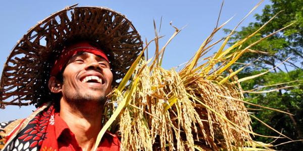 Bangladesh set to celebrate graduation from LDC