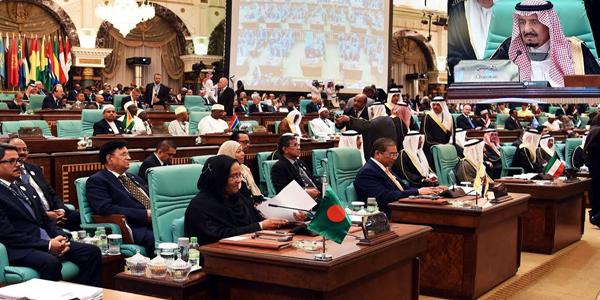 Hasina seeks OIC help to restore Rohingya rights