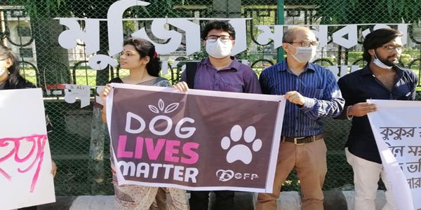 EDITORIAL: Dog lives matter!