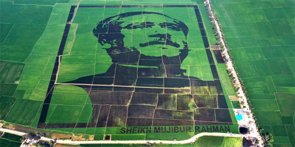 Crop-filed mosaic on Bangladesh's founder is on Guinness World Record
